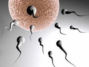 posturas y posiciones adecuadas para quedar en embarazo